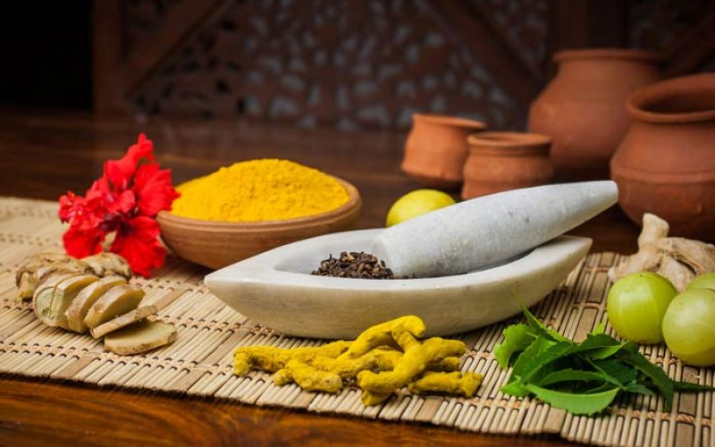 In what aspects Ayurvedic medicines are different from modern ones?