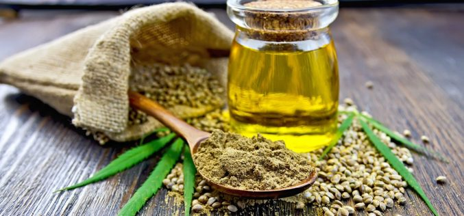 Strategies for Finding the Best Hemp Products