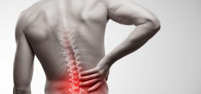 6 Potential Causes of Low Back Pain